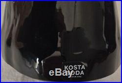 KOSTA BODA WILDLIFE TOKO LOCO TOUCAN GLASS FIGURINE by LUDVIG LOFGREN. 7091118