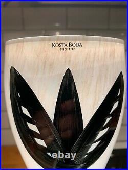 Kosta boda@Ulrica Hydman Vallien@black and white tulipa vase 36cm high@